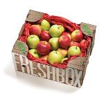 Bio Apfel Box